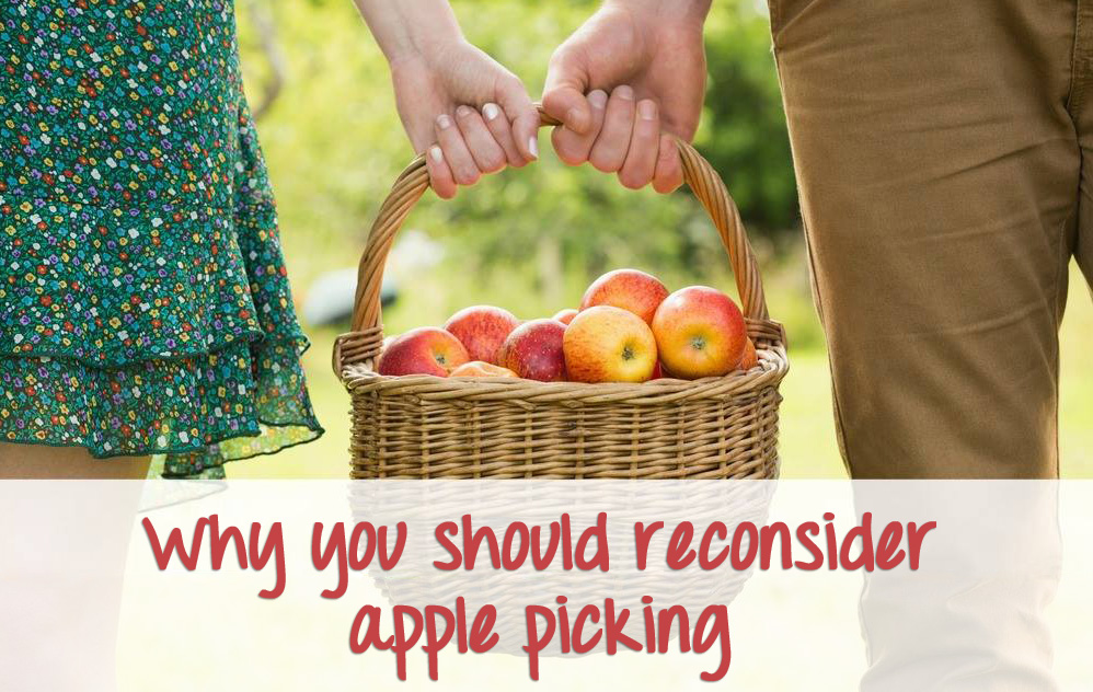 Why you should reconsider apple picking