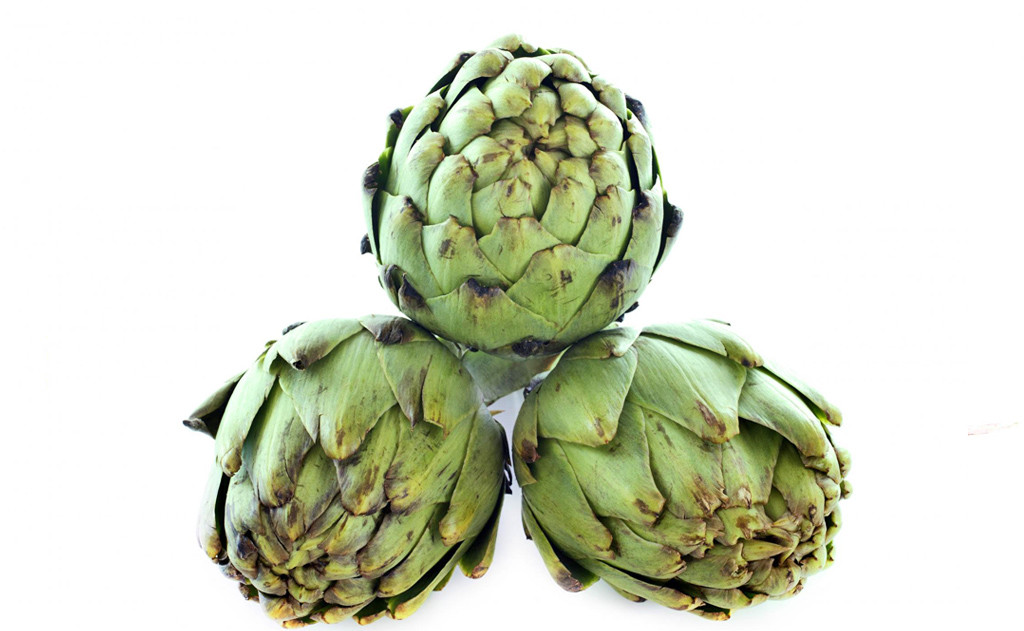 Spring Website Artichoke