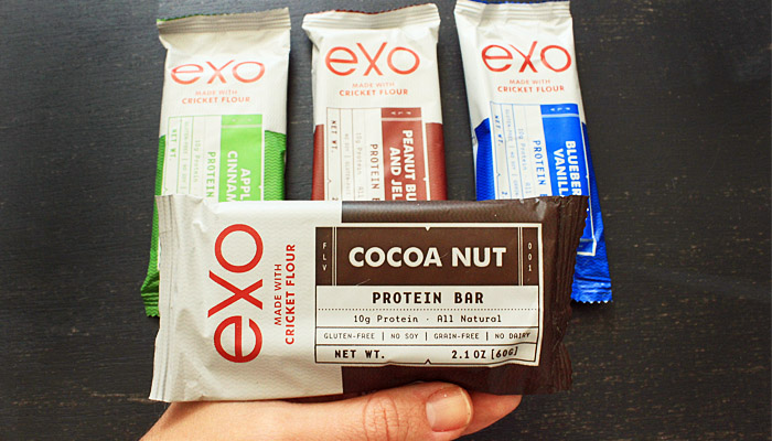 Product Review Exo Cricket Protein Bars2