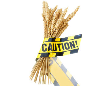 wheat gluten celiac food sensitivity