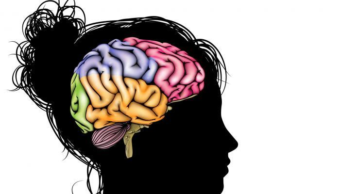 Rig Your Brain to Work in Your Favor