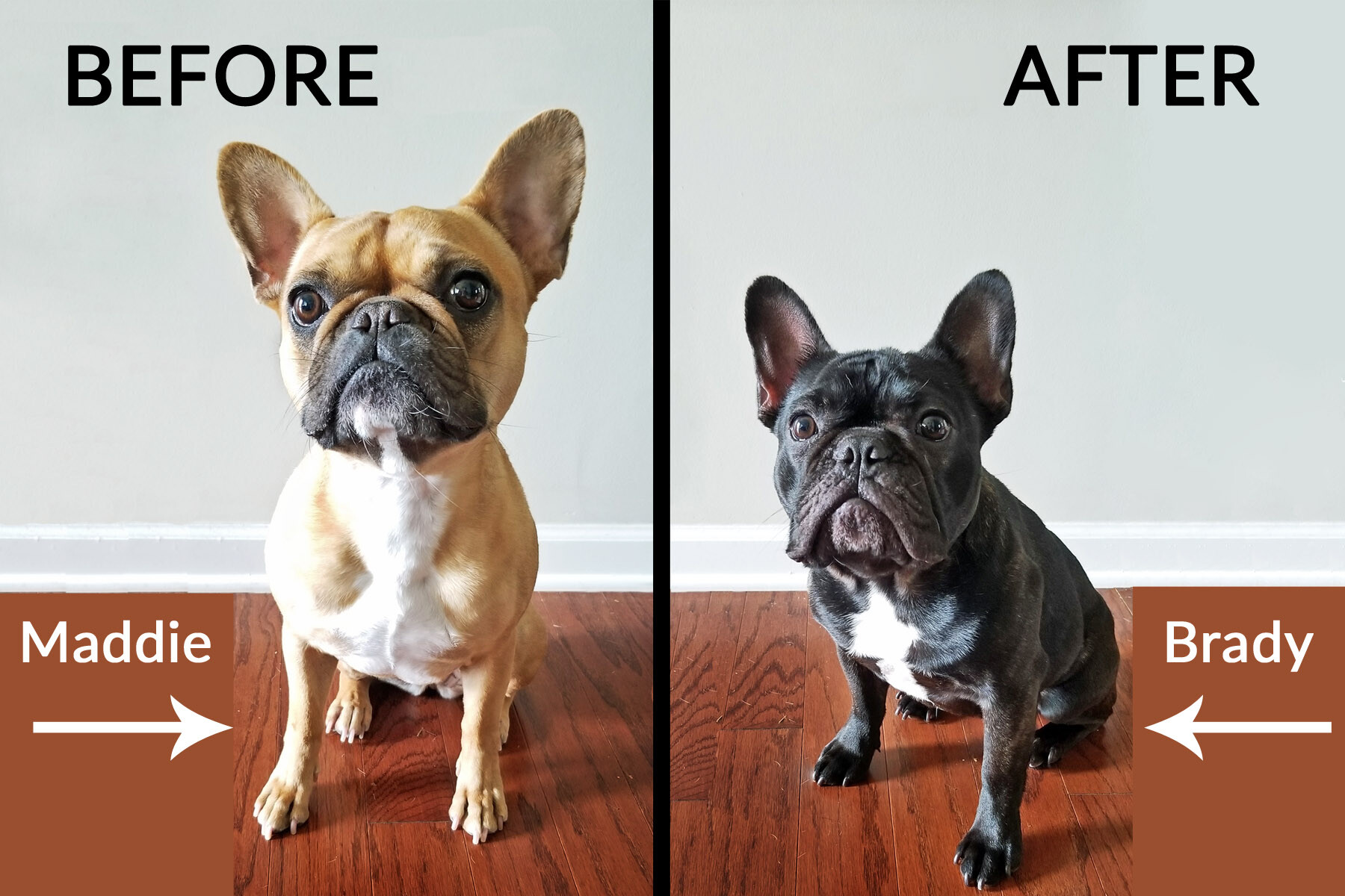 Before &...After?